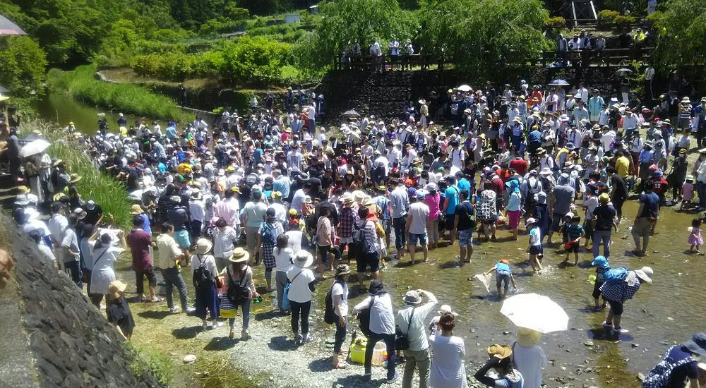 神山温泉まつり(あめごのつかみどり)